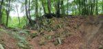 Kraftorte: Impressionen vom Basaltkrater Windeck